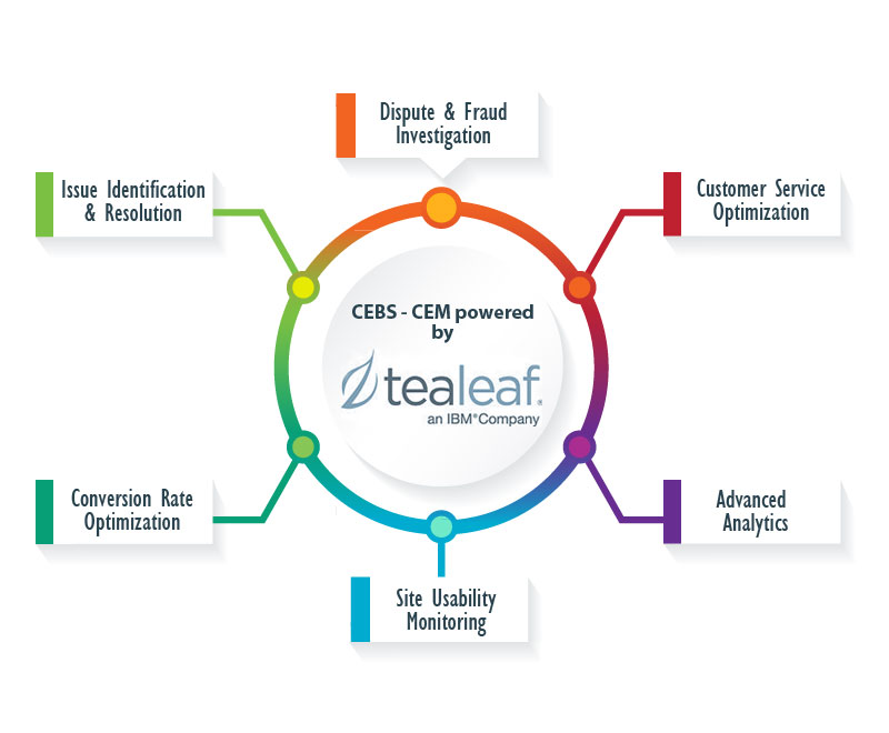 Tealeaf Customer Experience Management